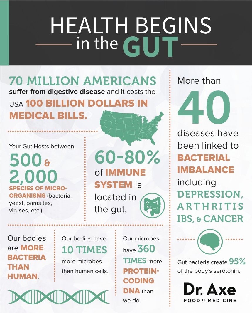 Image result for visual happiness starts in the gut. hormones produced in the gut
